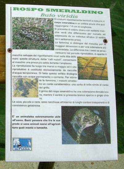 Parco della Piana - Podere della Querciola - Aula didattica