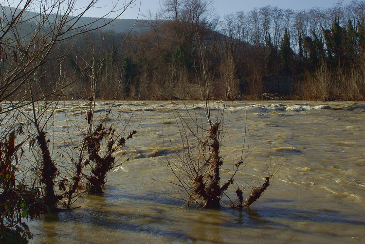 Quintole: due passi sulla riva d''Arno