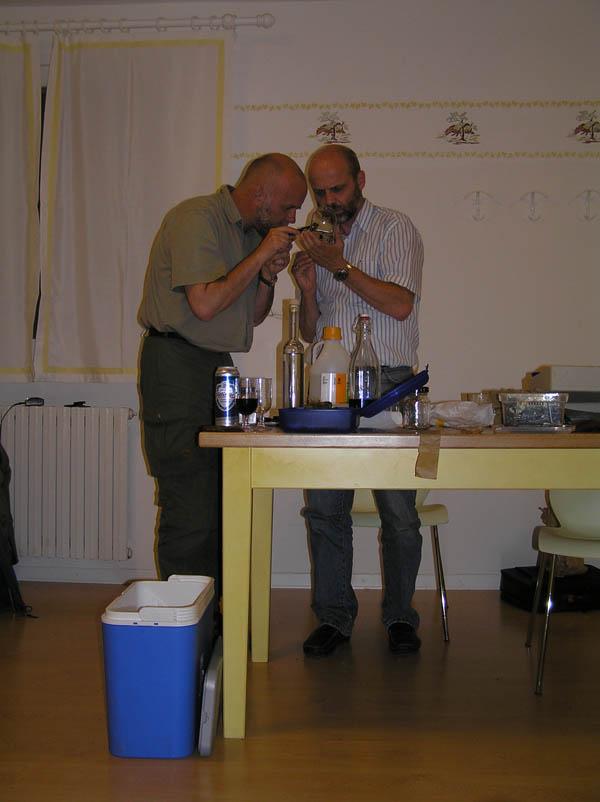 Limax (Brachylimax) giovannellae Falkner & Niederhöfer 2008